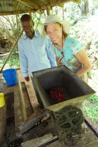 Removing the red skins from the fresh coffee beans on the coffee plantation tour.