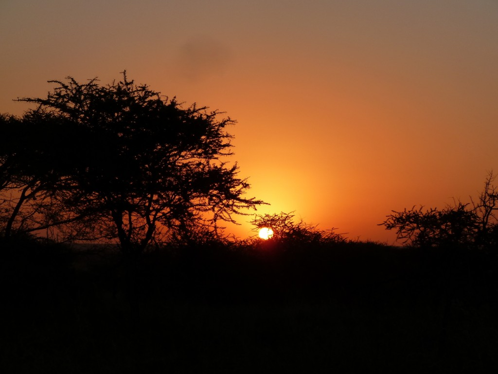 Sunset at Kati Kati camp.