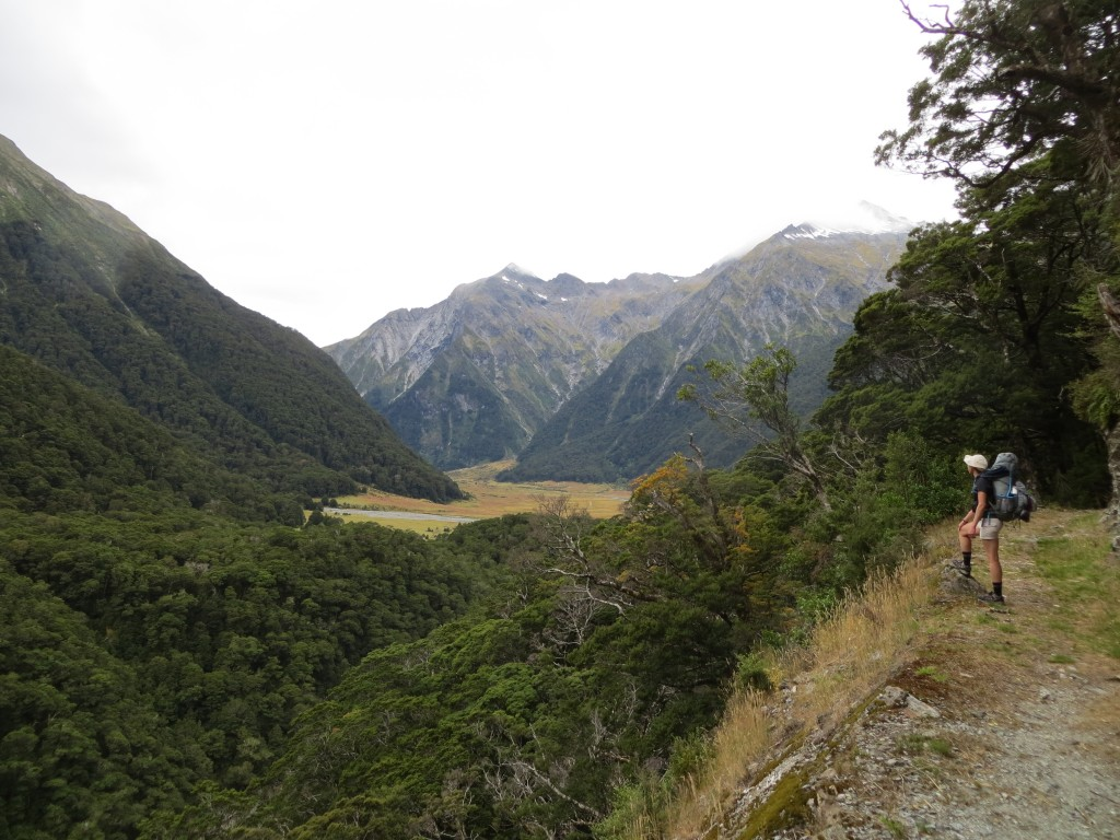 A typical view along the trail in Mt. Aspiring National Park.