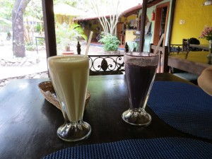 Smoothies at Jardin Escondido Mexican Restaurant.