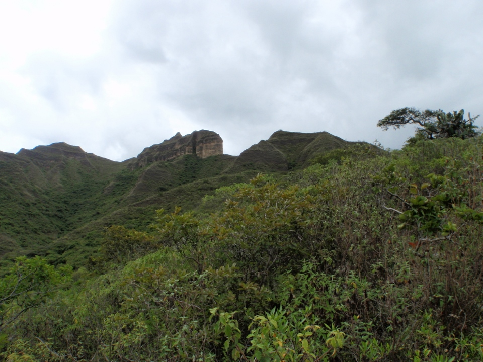Mandango in Vilcabamba