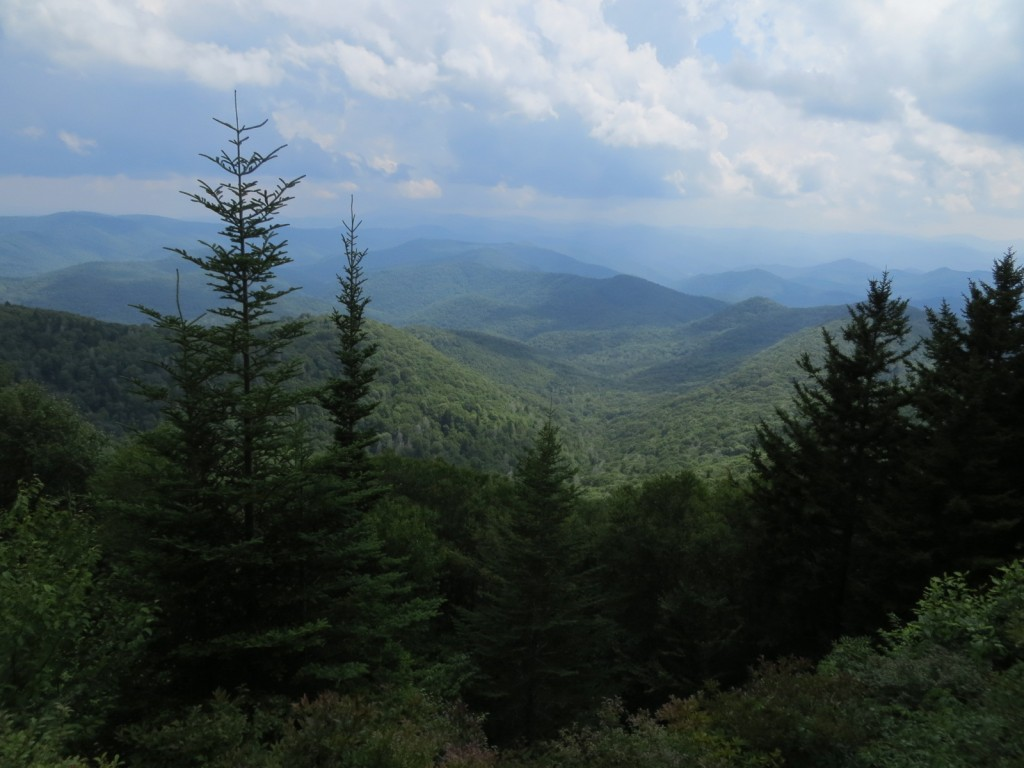 Another view during a hike near the Blue Ridge Parkway.