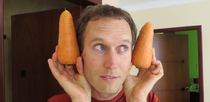 giant carrots header