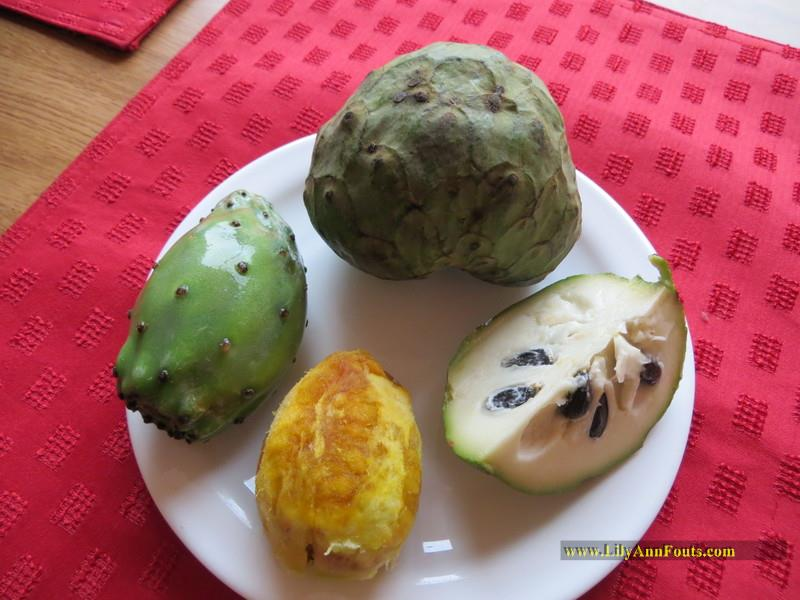 tuna, cactus fruit, prickly pear cactus, chirimoya, cherimoya, custard apple