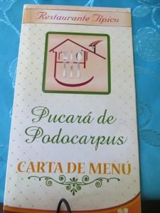 Pucara de Podocarpus