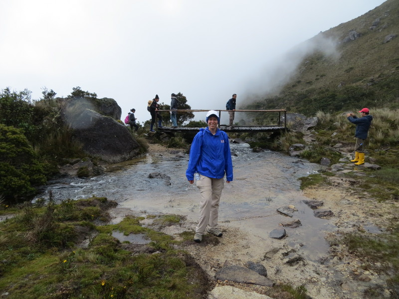 Yacuri NP Trail bridge