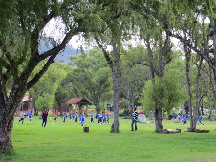 Soccer teams playing in the park.