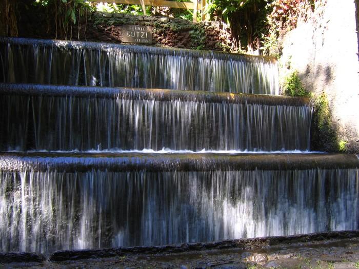 Parque Nacional Uruapan 1