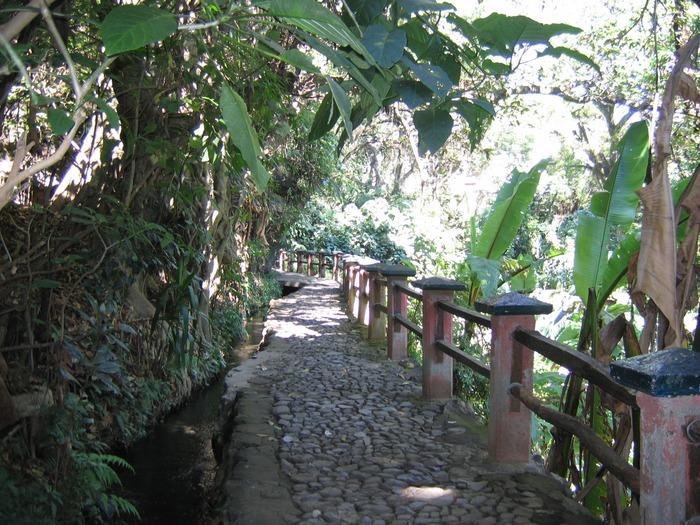 Parque Nacional Uruapan 10