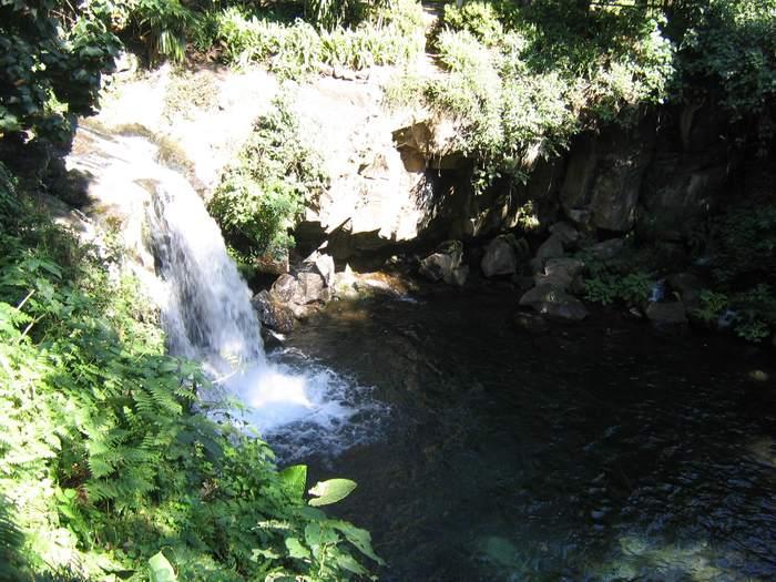 Parque Nacional Uruapan 9