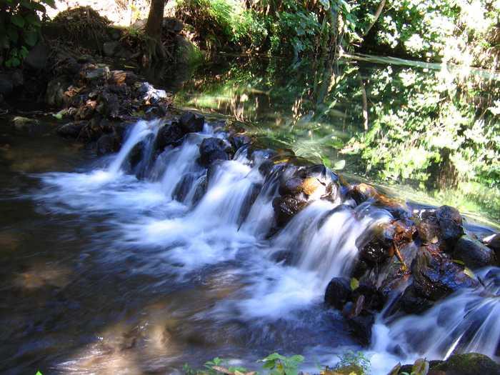Parque Nacional Uruapan 8