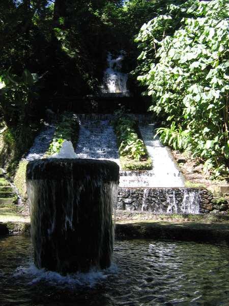 Parque Nacional Uruapan 6