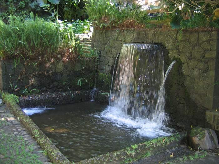 Parque Nacional Uruapan 4