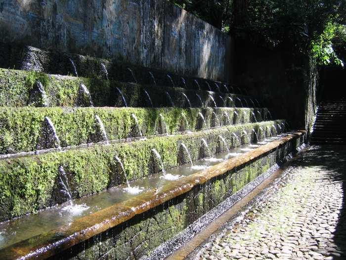 Parque Nacional Uruapan 3